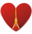 heart with golden zipper vector image vector image