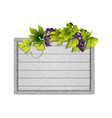 frame wooden white board and grapevine vector image