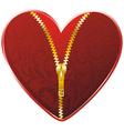 golden zipper floral vector image vector image