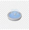 isolated fountain isometric park decoration vector image