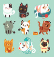 cute cartoon cats funny playful kittens vector image