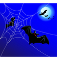 Bats and a web vector image vector image