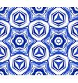 kaleidoscope white blue star flower vector image