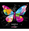 butterfly splashes vector image vector image