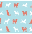 chihuahua small dog seamless pattern vector image