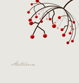 Autumn with plant and red fruit and place for your vector image