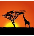 Typical African sunset vector image