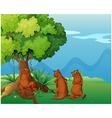 Three playful wild animals near the big old tree vector image vector image