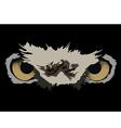 owl eyes vector image