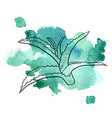 aloe at watercolor background vector image