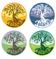 Tree in four seasons vector image vector image