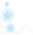 chamomile blue white vector image