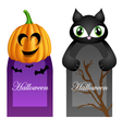 Halloween cards with cartoon pumpkin and cat vector image vector image