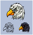 Bald Eagle Head vector image vector image