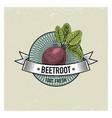 beetroot vintage set of labels emblems or logo vector image