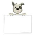 Dog holding banner vector image