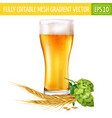 glass of beer and hops on white background vector image