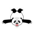 bearskin panda chinese bear skin hunter trophy vector image