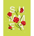 Abstract lettering with word Summer and red vector image