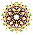 Colorful mandala motif vector image