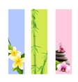 spa banners vector image vector image