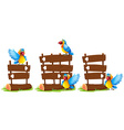 Parrots by the wooden sign vector image vector image