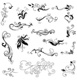 Decorative floral elements vector image vector image