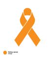 Kidney Cancer ribbon vector image