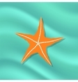 Caribbean Starfish on Azure Background vector image