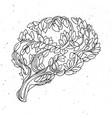 healthy brain concept tree vector image