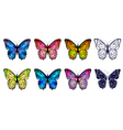 butterfly collection vector image