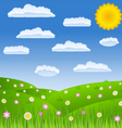 summer field vector image