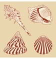 Vintage Shells Set EPS10 vector image