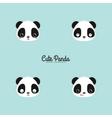 Cute panda faces vector image