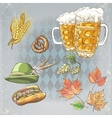 A set of objects to the Oktoberfest vector image vector image