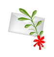 Lovely Green Mistletoe with A Red Bow and Letter vector image