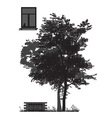 tree in front of house vector image