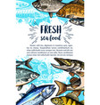 seafood and freshwater fish sketch banner vector image