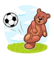 Bear Footballer vector image