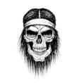 skull head injun vector image