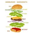 Hamburger ingredients set vector image