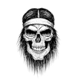 skull head injun vector image