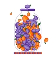 Bank with fruit jam for your design vector image