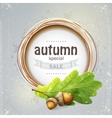 Background image for the big autumn sale with oak vector image vector image
