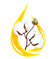 cotton seed oil  vector image