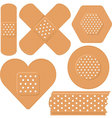 adhesive plaster vector image