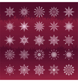 Set of snowflakes vinous background vector image vector image