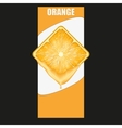 Vertical Banner of orange square slice Space for vector image