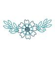aster flower leaves natural petal decoration image vector image
