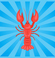 crawfish or crawdads freshwater lobster yabbies vector image